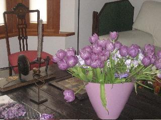 Tulipanes para el domingo